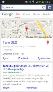 Google Mobil Örnek Arama Sorgusu